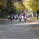Maraton (15)